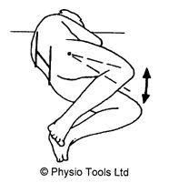 Lumbar Support - Exercises