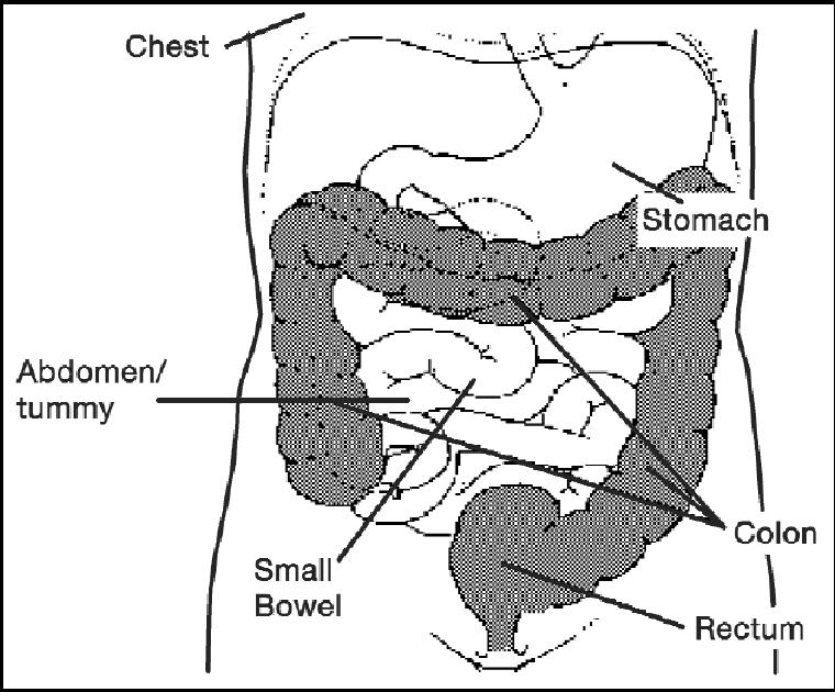 virtual colonoscopy preparation instructions