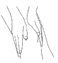 Movement of the knee cap