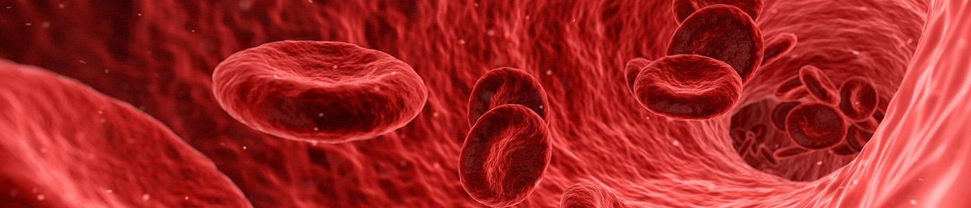 Blood Sciences