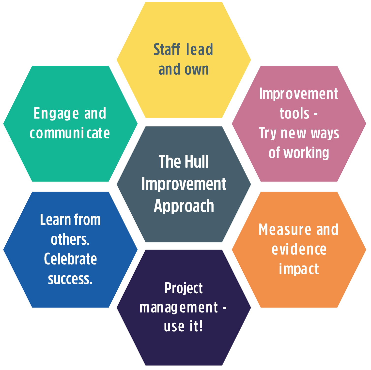 The Hospital Improvement Programme Approach